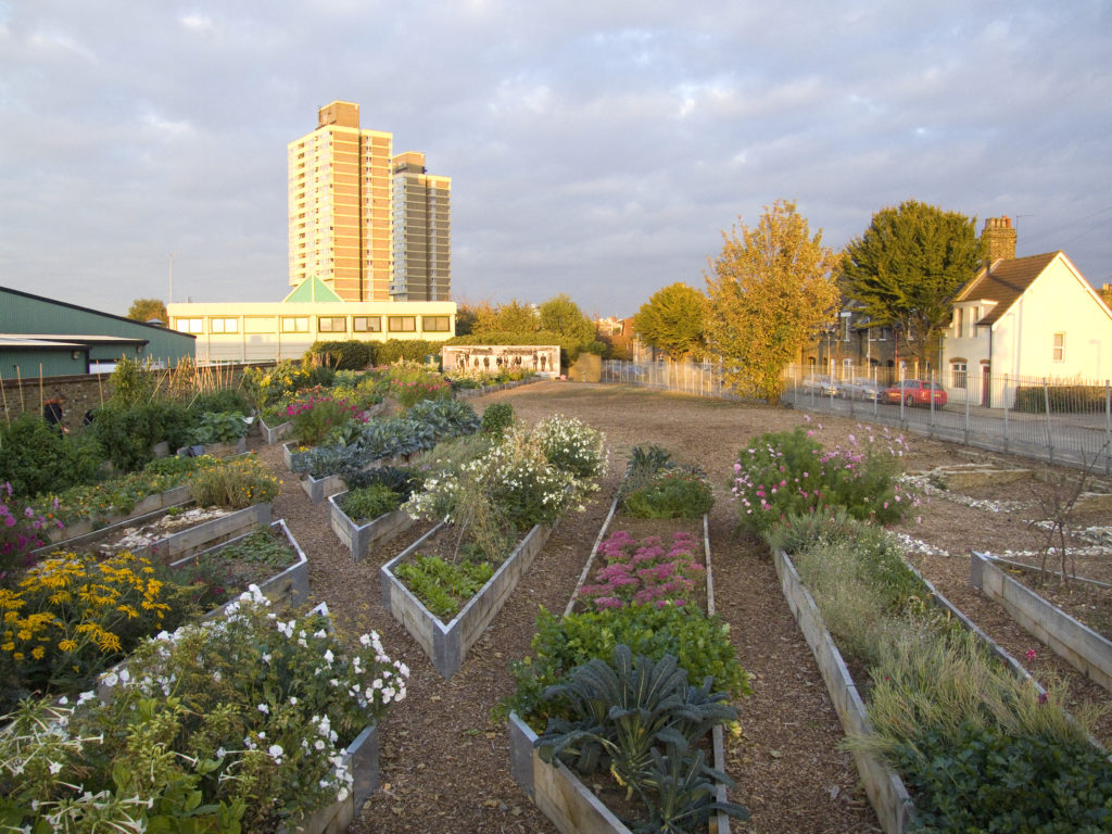 Flower and vegetable beds are shown in the foreground, behind there are trees, some low houses and a high rise building to the left hand side.