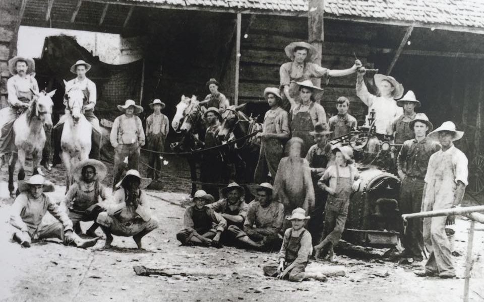 Black and white photograph showing a group of around 20 black and white male farmers posing for the camera with horses and some farm machinery.