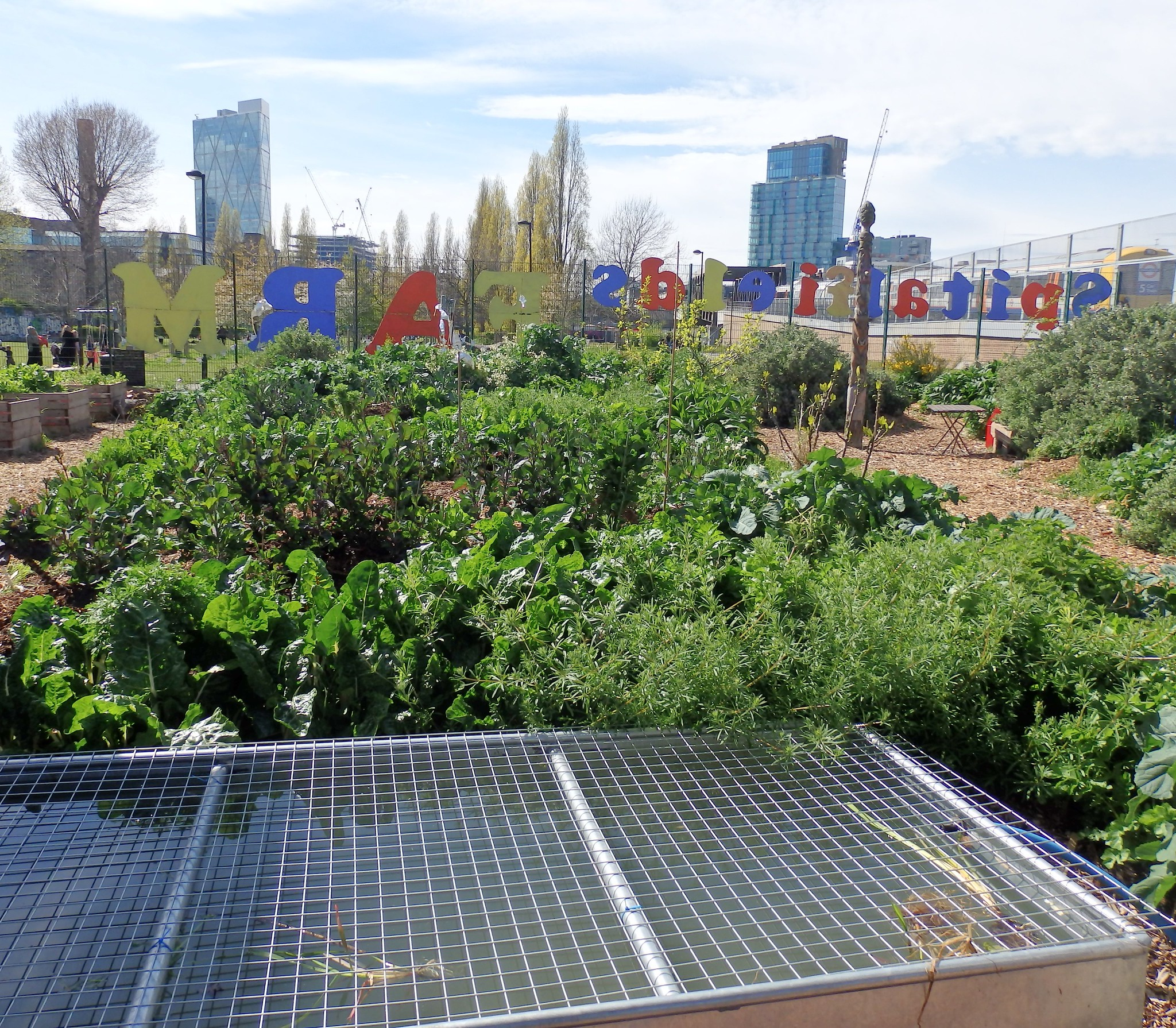 Colour photograph looking out from the farm, with growing vegetables in the foreground, through a fence carrying the farm's name in coloured lettering, to the city beyond.
